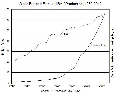 【アースポリシー研究所より】養殖魚の生産量、牛肉を追い越す