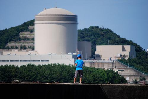 エネルギー基本計画政府案、原発「重要」の文言削除されず