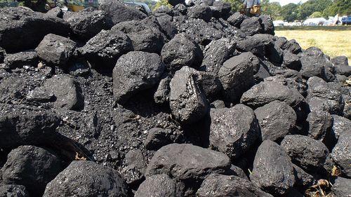 石炭火力発電所の増加は禍根を残す