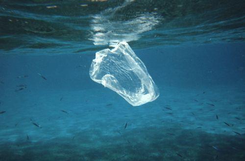 第1回プラスチック資源循環戦略小委員会にあたって