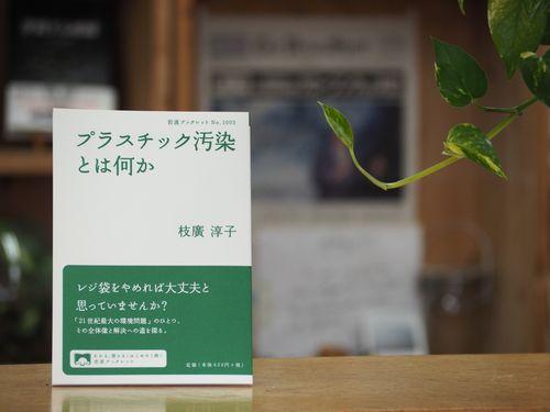『プラスチック汚染とは何か』(岩波ブックレット)が発売されました!