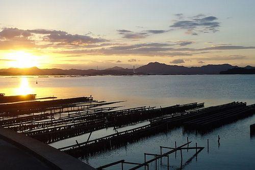 減らして得られる豊かさ~南三陸戸倉の牡蠣養殖の取り組み